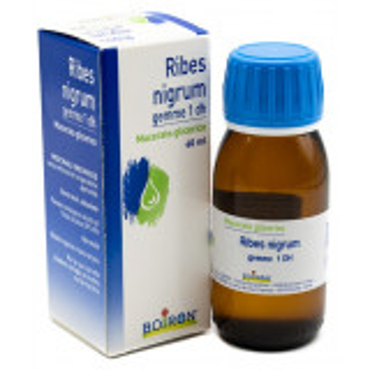 BOIRON RIBES NIGRUM MACERATO GLICERICO 60ML