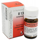 DR. RECKEWEG R13 100CPR 100MG