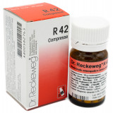 DR. RECKEWEG R42 100CPR 100MG