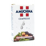 AMUCHINA COMPRESSE 1G 24CPR