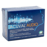ACUVAL AUDIO 14BST