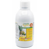 INVERTER HYDRO ANANAS 500ML