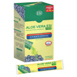 ALOE VERA MIRTILLO POCKET 24DRINK