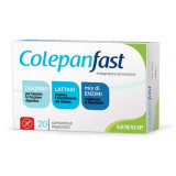 COLEPAN FAST 20CPR