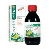 COTIDIERBE Fluid Integratore 170ml